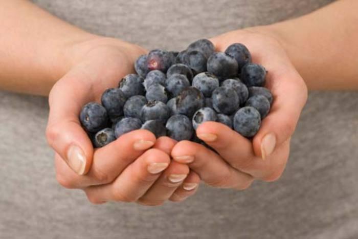 Prírodné zdroje antioxidantov