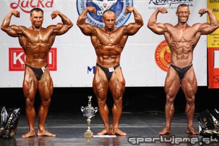 Grand Prix Slovakia Trnava 2008 - muži do 87,5kg