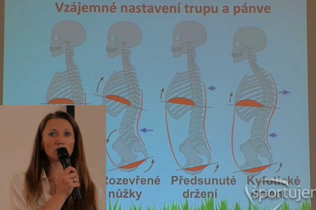 DNS - Dynamická neuromuskulárna stabilizácia a využitie v športe